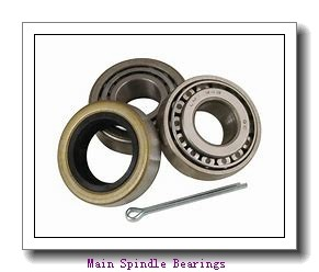 BARDEN C1818HE Main Spindle Bearings